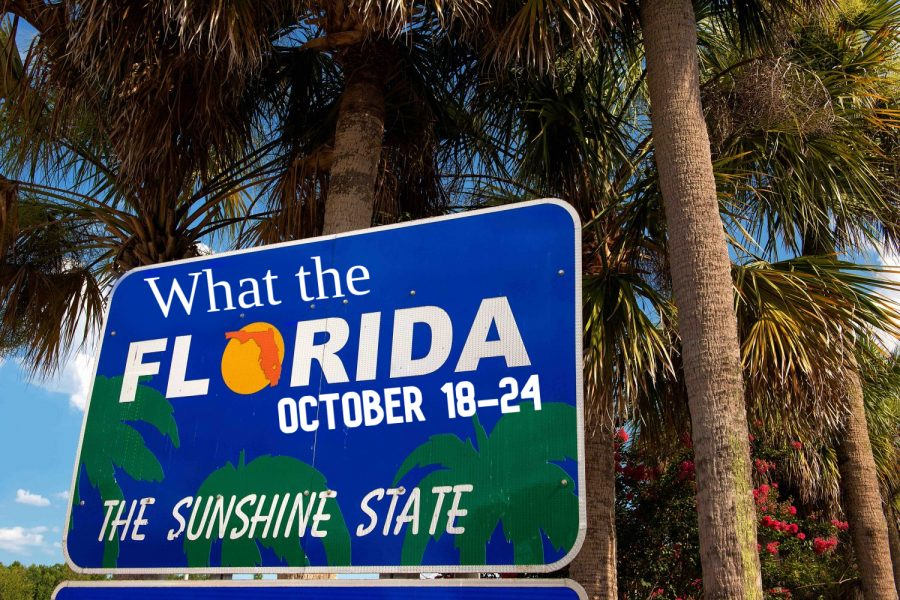 What the Florida!? - Week of October 18