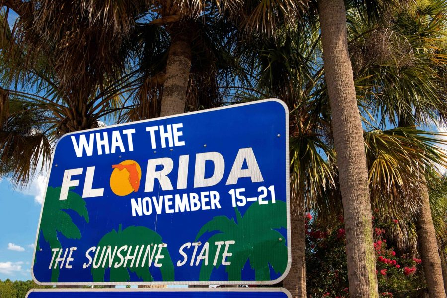 What+the+Florida%21%3F+-+Week+of+November+15