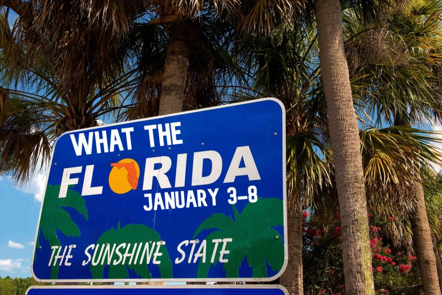 What+the+Florida%21%3F+-+Week+of+January+3-8